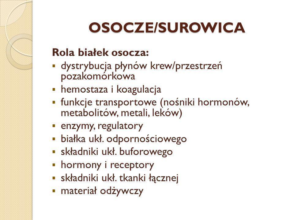 OSOCZE/SUROWICA Rola białek osocza: