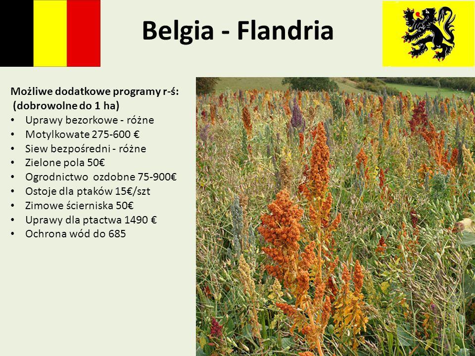 Belgia - Flandria Możliwe dodatkowe programy r-ś: (dobrowolne do 1 ha)