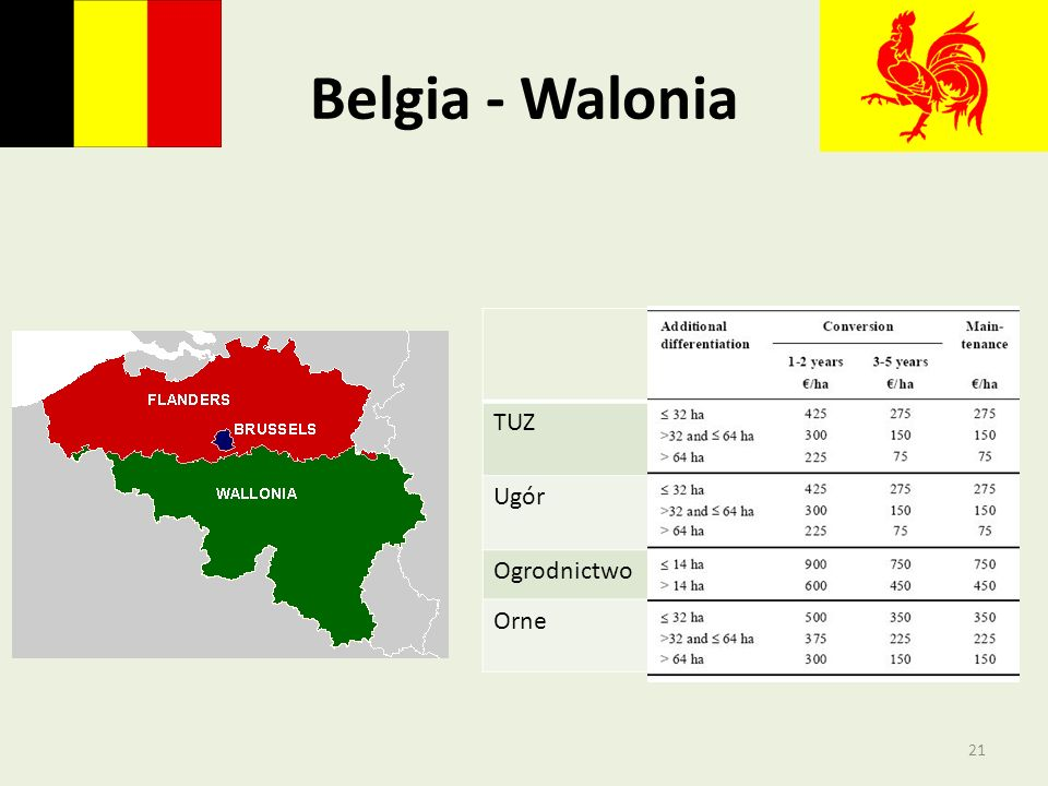 Belgia - Walonia TUZ Ugór Ogrodnictwo Orne