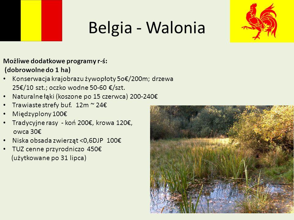 Belgia - Walonia Możliwe dodatkowe programy r-ś: (dobrowolne do 1 ha)