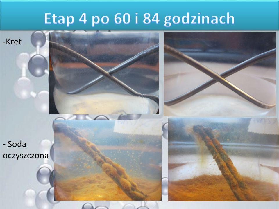 Etap 4 po 60 i 84 godzinach Kret Soda oczyszczona