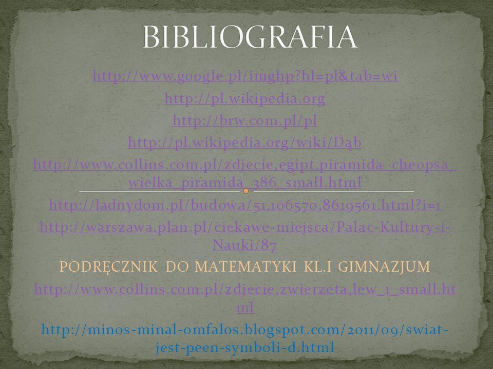 BIBLIOGRAFIA http://www.google.pl/imghp hl=pl&tab=wi