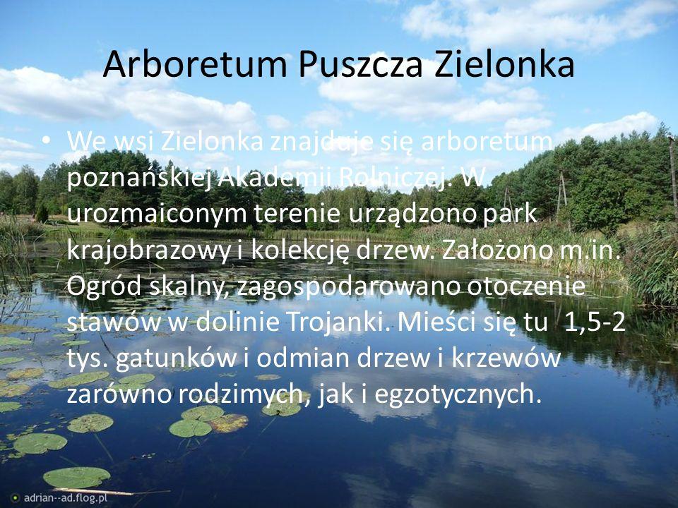 Arboretum Puszcza Zielonka