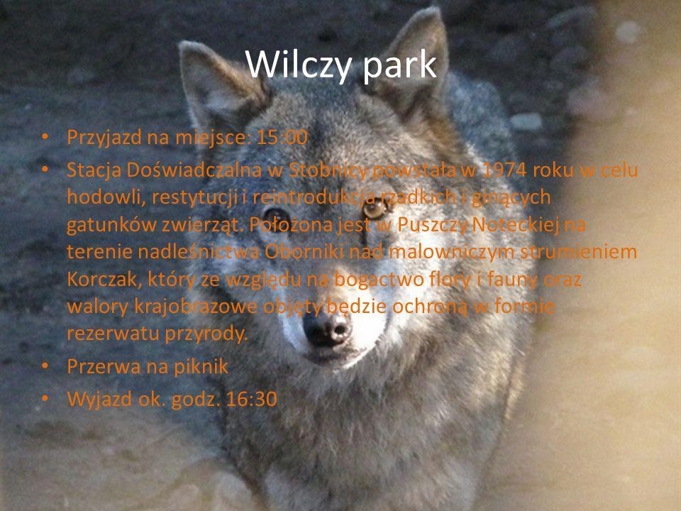 Wilczy park Przyjazd na miejsce: 15:00