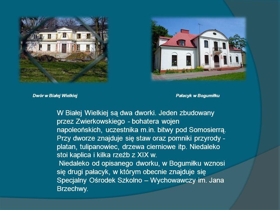 Dwór w Białej WielkiejPałacyk w Bogumiłku.