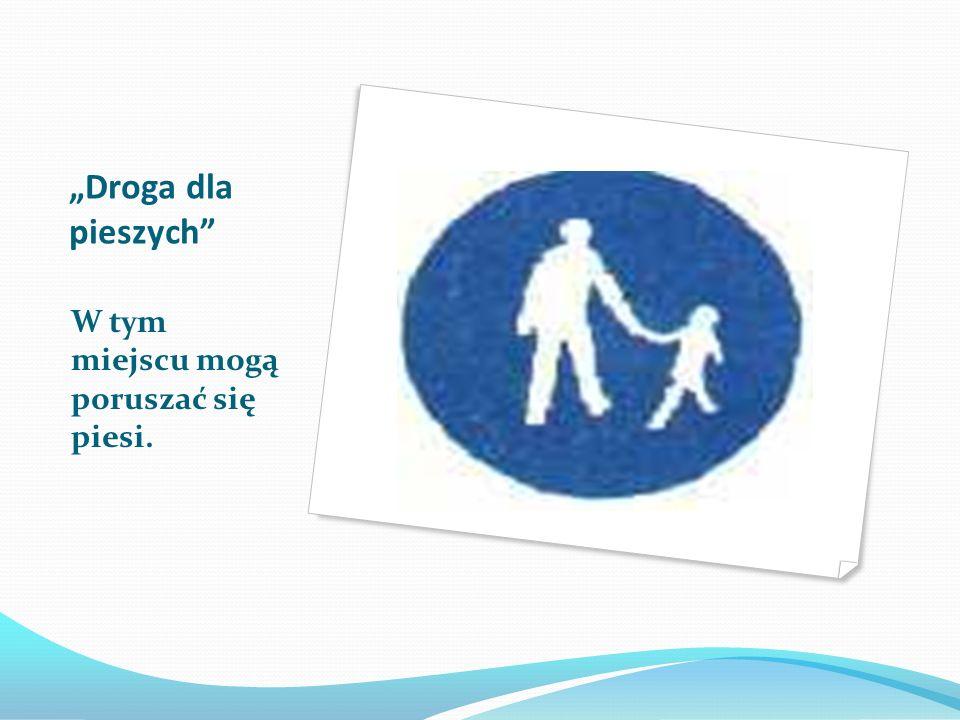 """""""Droga dla pieszych W tym miejscu mogą poruszać się piesi."""