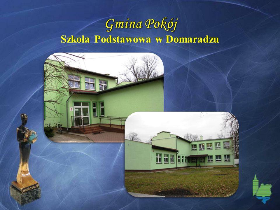 Szkoła Podstawowa w Domaradzu