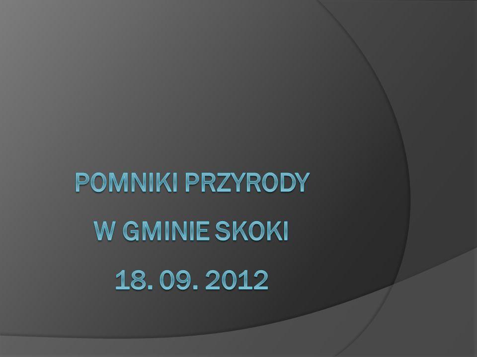 POMNIKI PRZYRODY W GMINIE SKOKI 18. 09. 2012