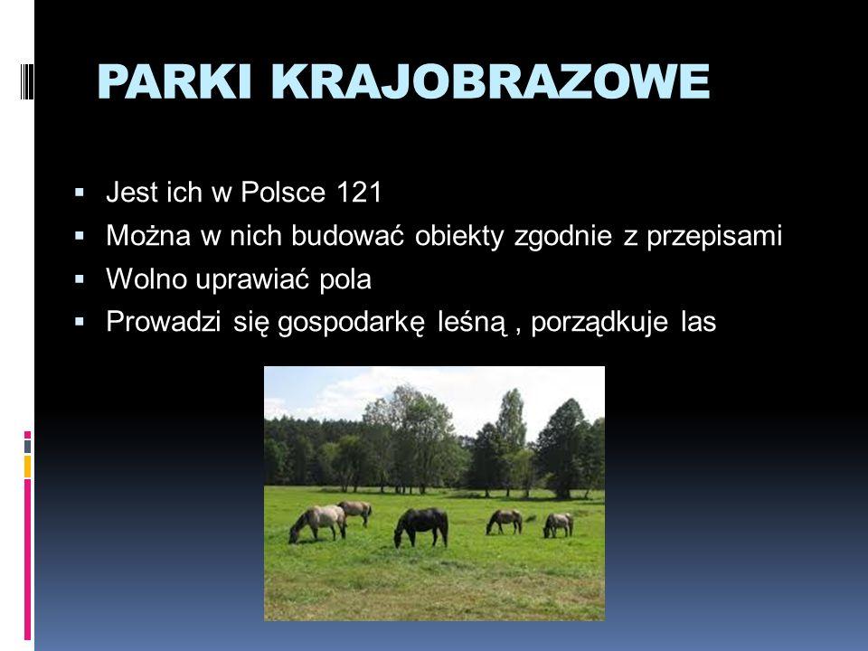 PARKI KRAJOBRAZOWE Jest ich w Polsce 121