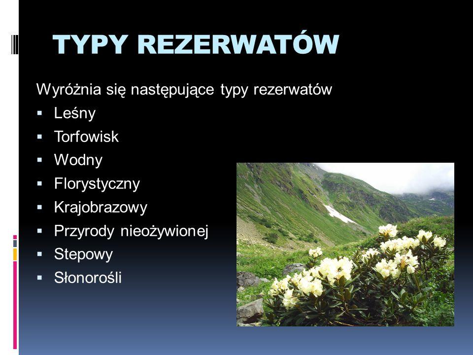 TYPY REZERWATÓW Wyróżnia się następujące typy rezerwatów Leśny