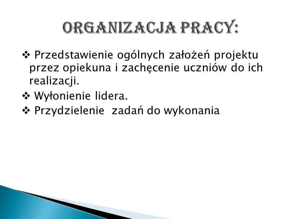 Organizacja pracy: