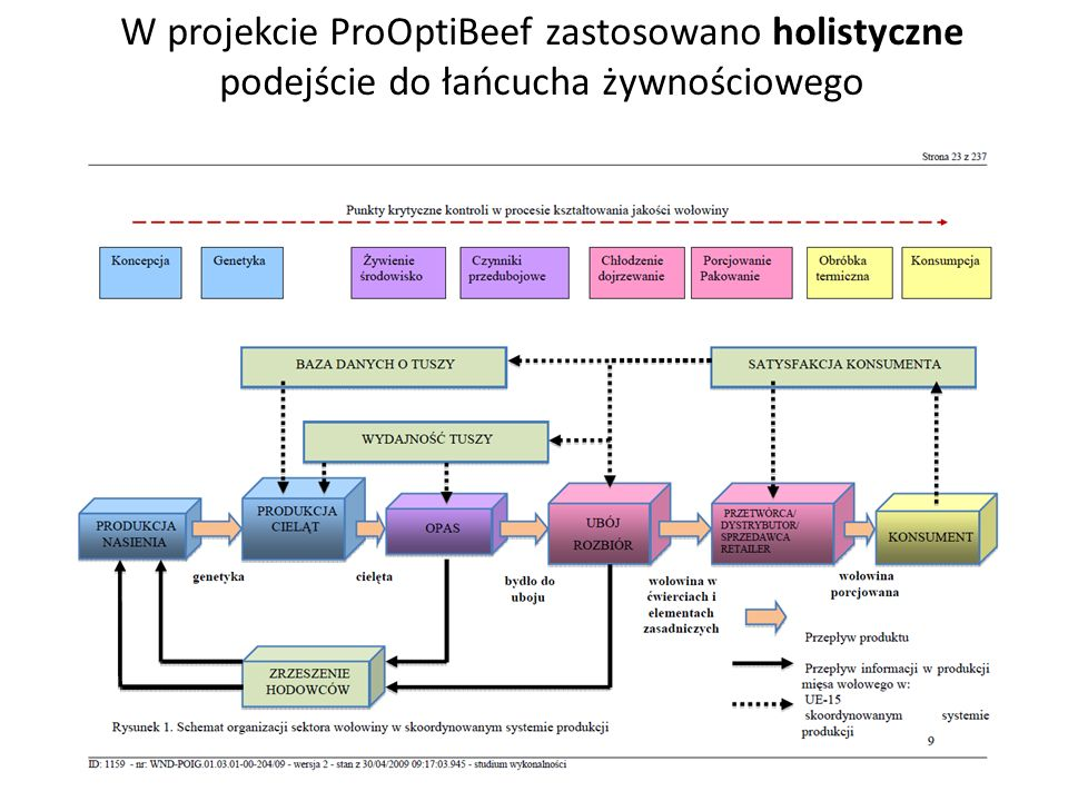 W projekcie ProOptiBeef zastosowano holistyczne podejście do łańcucha żywnościowego