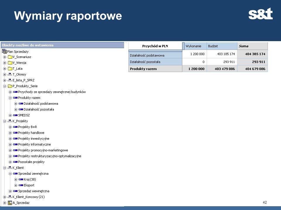 Wymiary raportowe Każdy plan, generuje gotowy model raportowy.