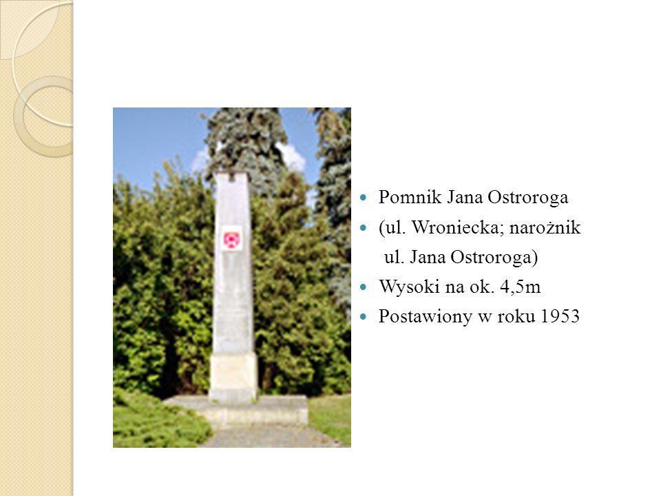 Pomnik Jana Ostroroga (ul. Wroniecka; narożnik. ul.