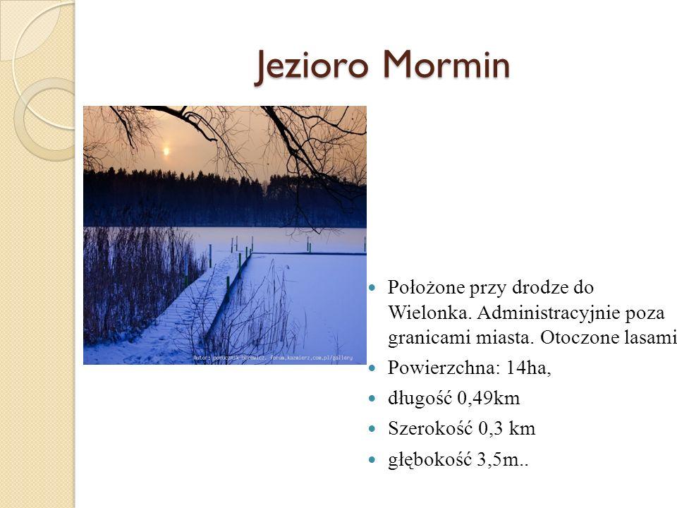 Jezioro Mormin Położone przy drodze do Wielonka. Administracyjnie poza granicami miasta. Otoczone lasami.