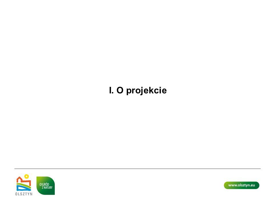 I. O projekcie