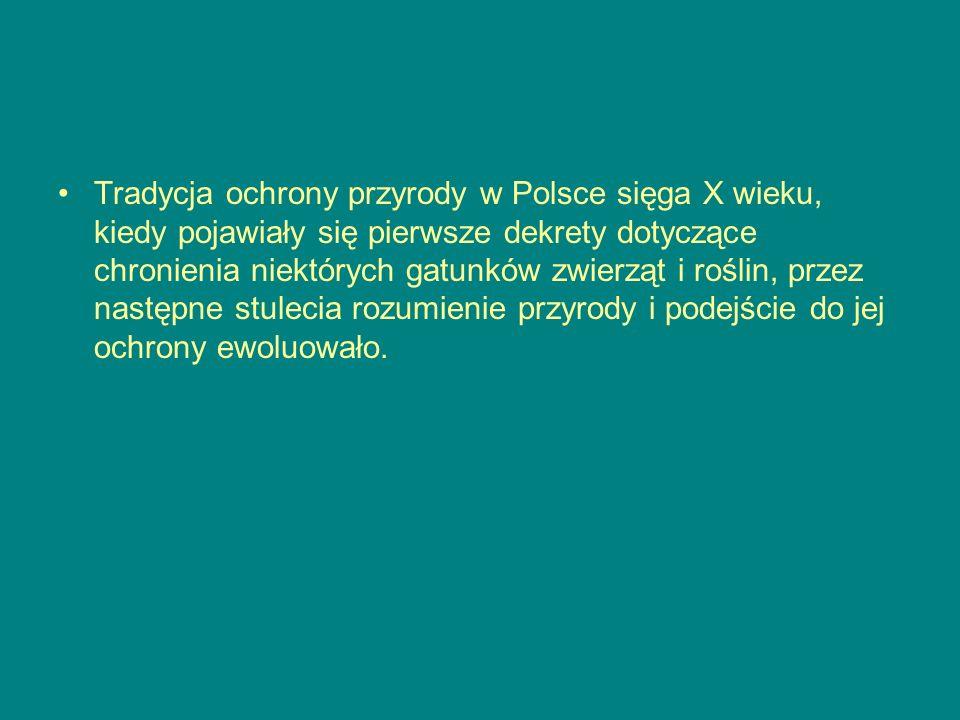 Tradycja ochrony przyrody w Polsce sięga X wieku, kiedy pojawiały się pierwsze dekrety dotyczące chronienia niektórych gatunków zwierząt i roślin, przez następne stulecia rozumienie przyrody i podejście do jej ochrony ewoluowało.