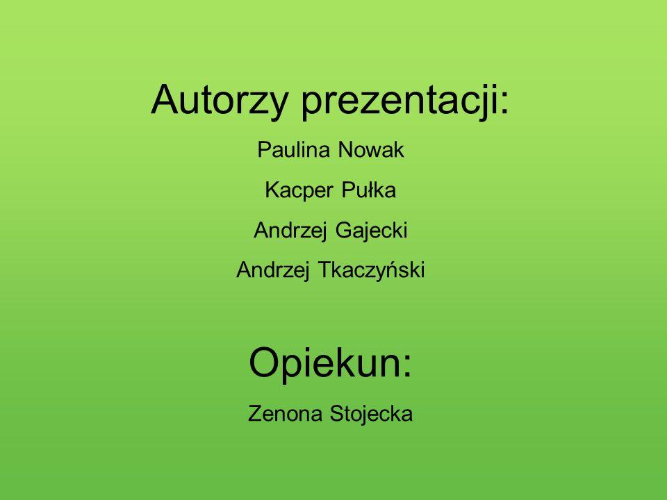 Autorzy prezentacji: Opiekun: Paulina Nowak Kacper Pułka