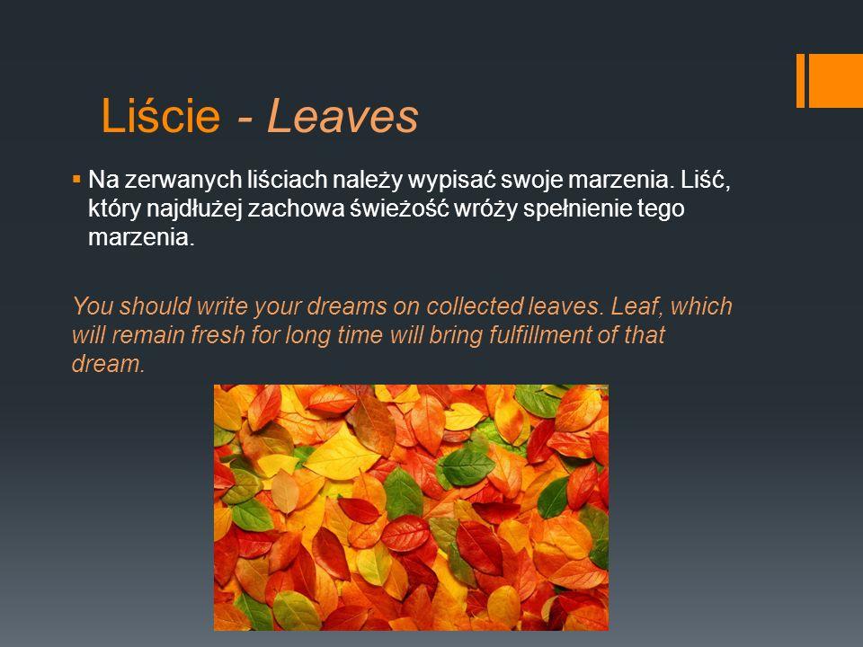 Liście - Leaves Na zerwanych liściach należy wypisać swoje marzenia. Liść, który najdłużej zachowa świeżość wróży spełnienie tego marzenia.