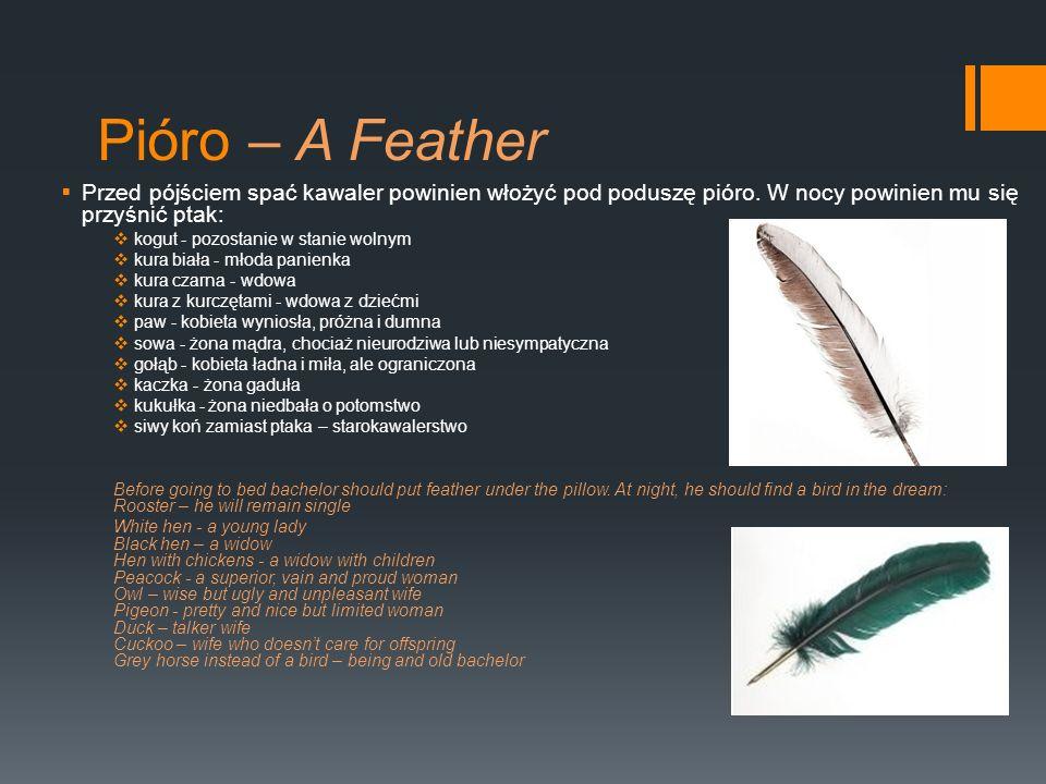 Pióro – A Feather Przed pójściem spać kawaler powinien włożyć pod poduszę pióro. W nocy powinien mu się przyśnić ptak: