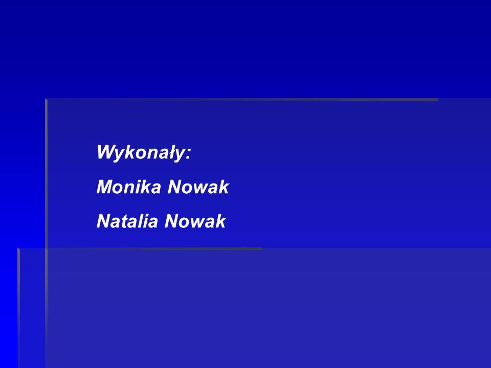 Wykonały: Monika Nowak Natalia Nowak