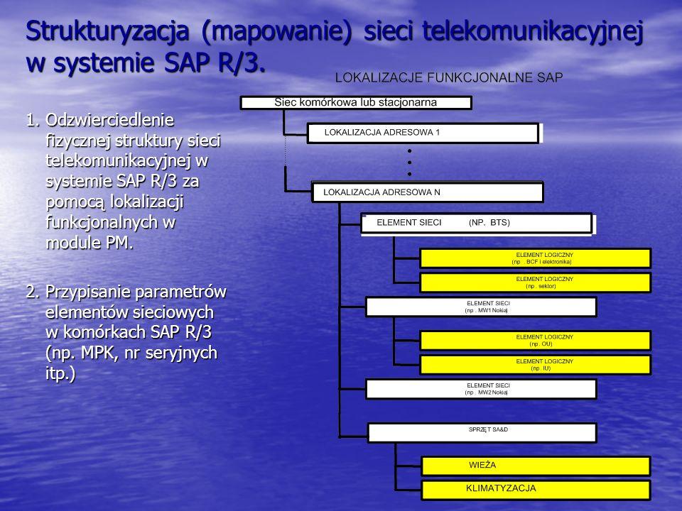 Strukturyzacja (mapowanie) sieci telekomunikacyjnej w systemie SAP R/3.