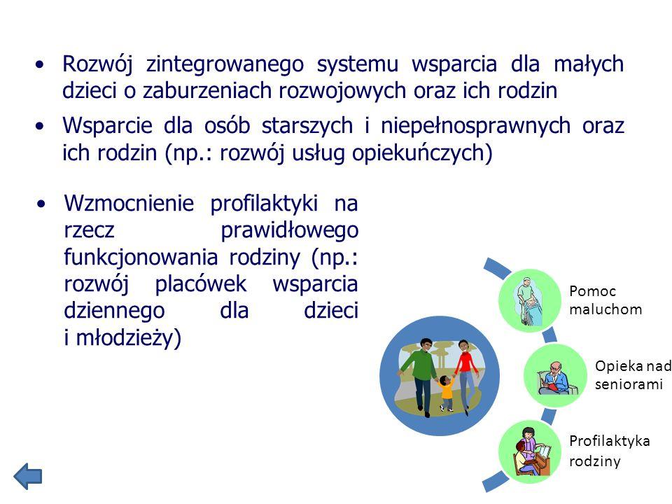 Rozwój zintegrowanego systemu wsparcia dla małych dzieci o zaburzeniach rozwojowych oraz ich rodzin