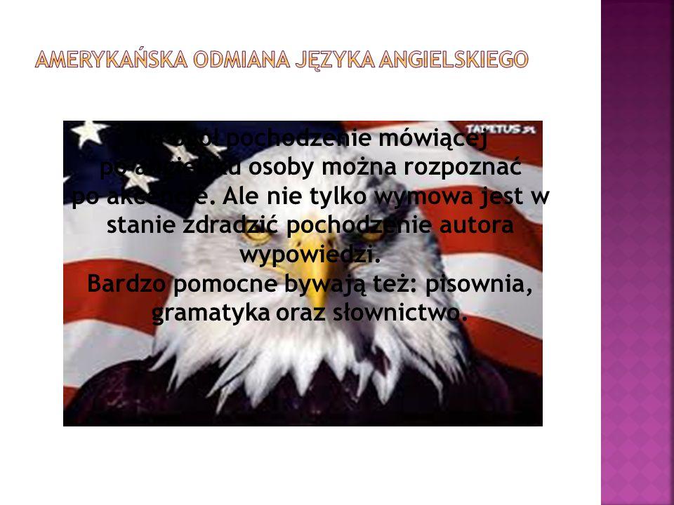 Amerykańska odmiana języka angielskiego