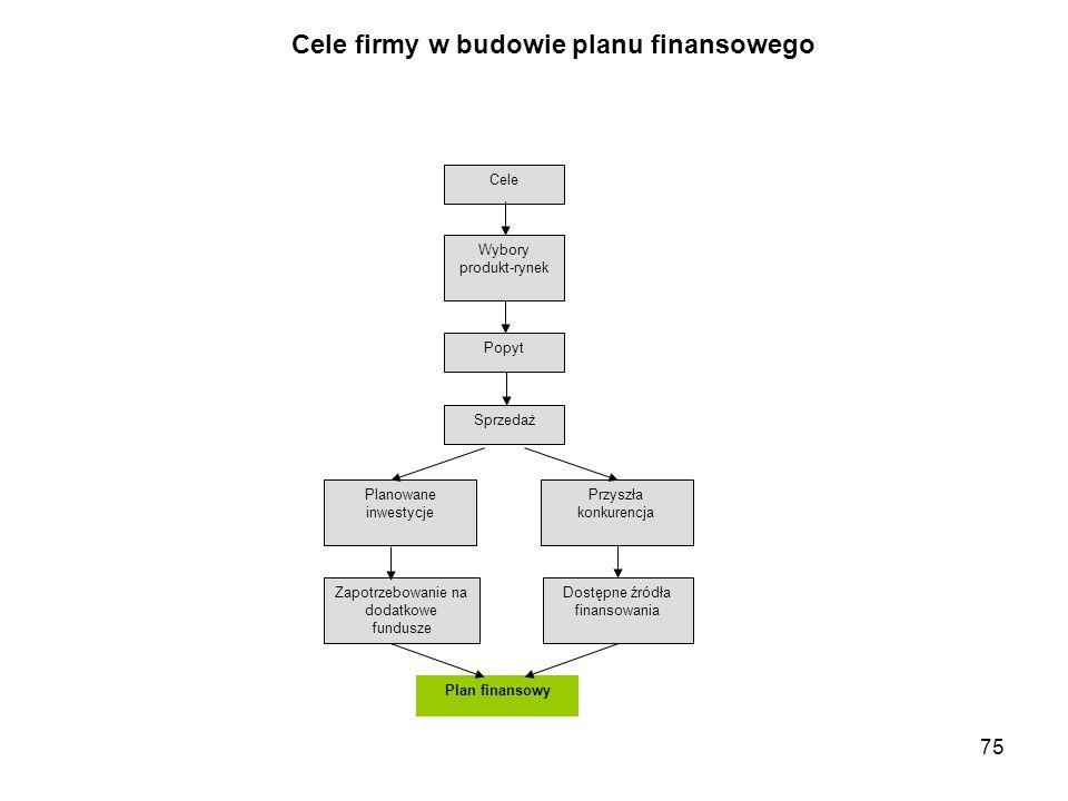 Cele firmy w budowie planu finansowego