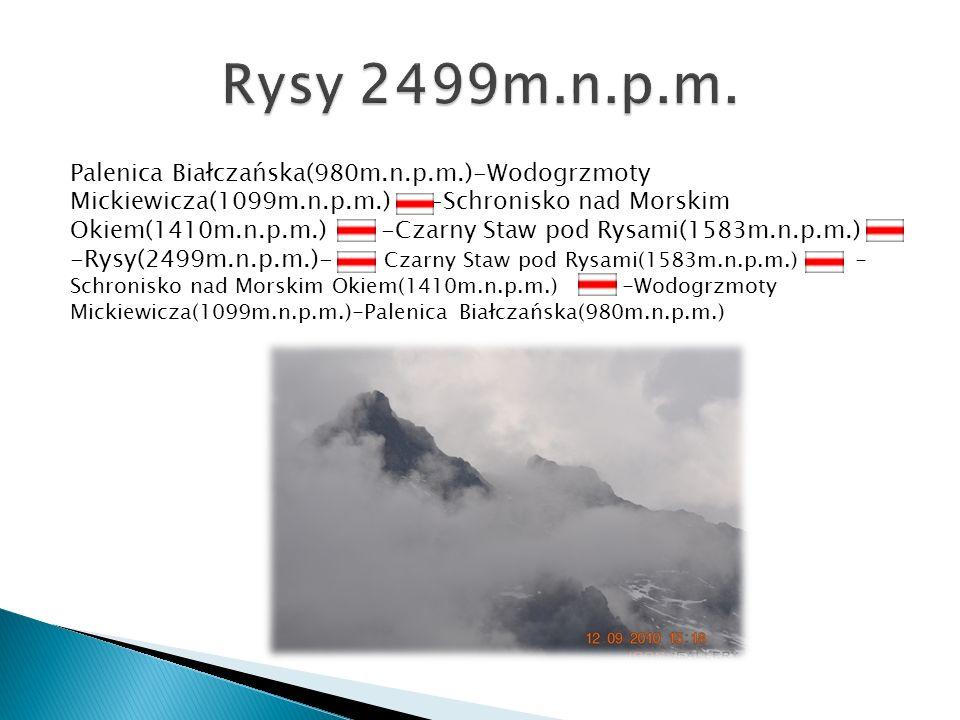Rysy 2499m.n.p.m.