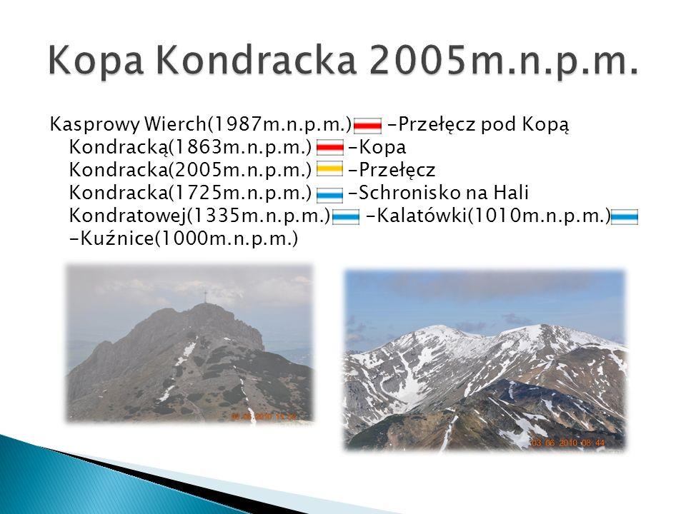 Kopa Kondracka 2005m.n.p.m.