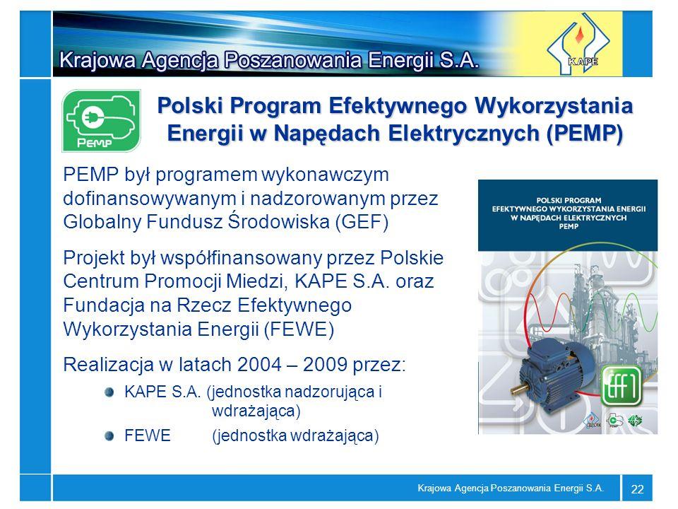 Polski Program Efektywnego Wykorzystania Energii w Napędach Elektrycznych (PEMP)