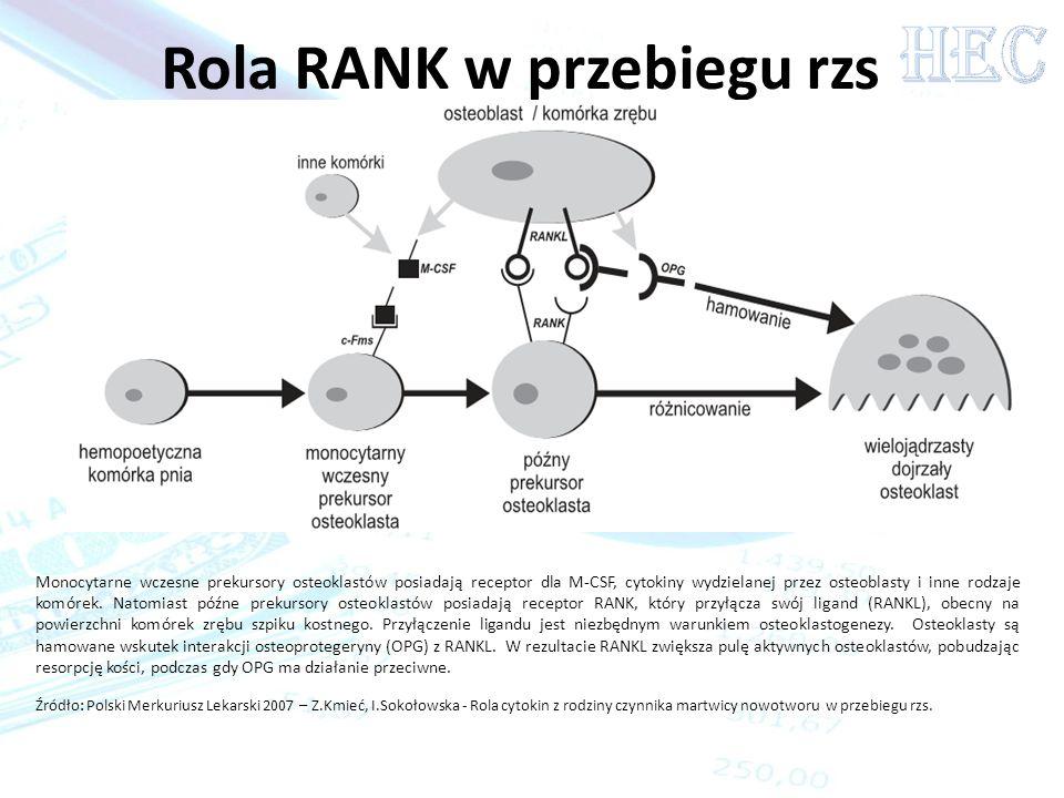 Rola RANK w przebiegu rzs