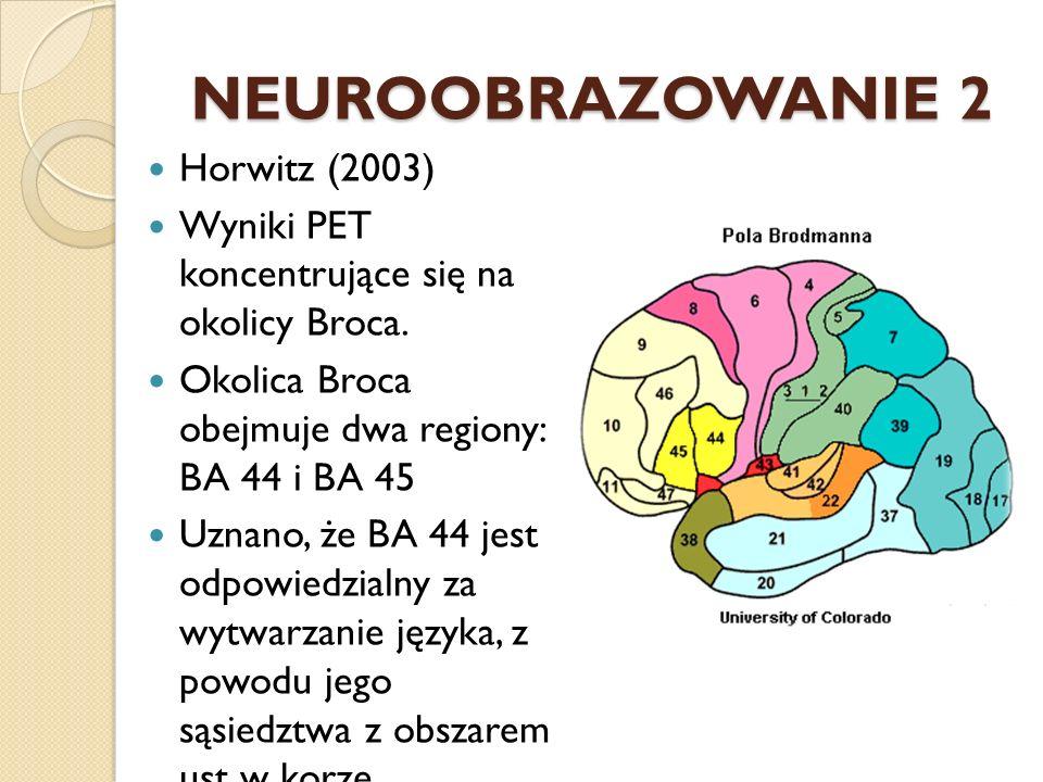 NEUROOBRAZOWANIE 2 Horwitz (2003)