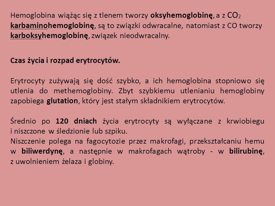 Hemoglobina wiążąc się z tlenem tworzy oksyhemoglobinę, a z CO2 karbaminohemoglobinę, są to związki odwracalne, natomiast z CO tworzy karboksyhemoglobinę, związek nieodwracalny.