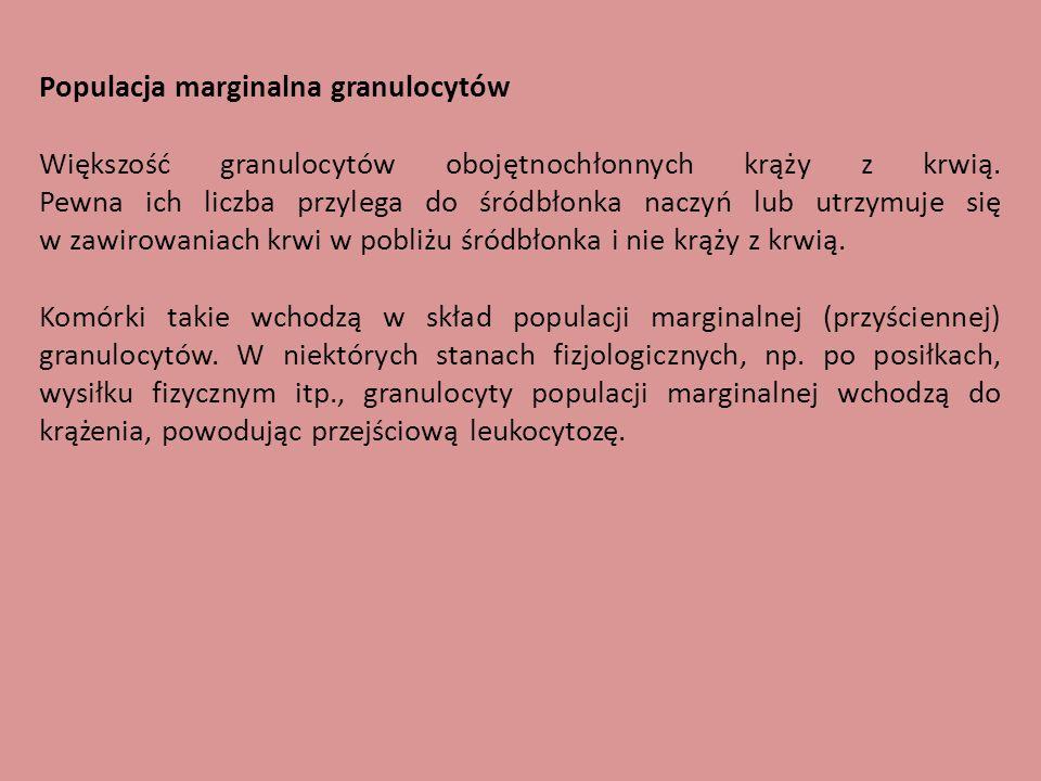 Populacja marginalna granulocytów