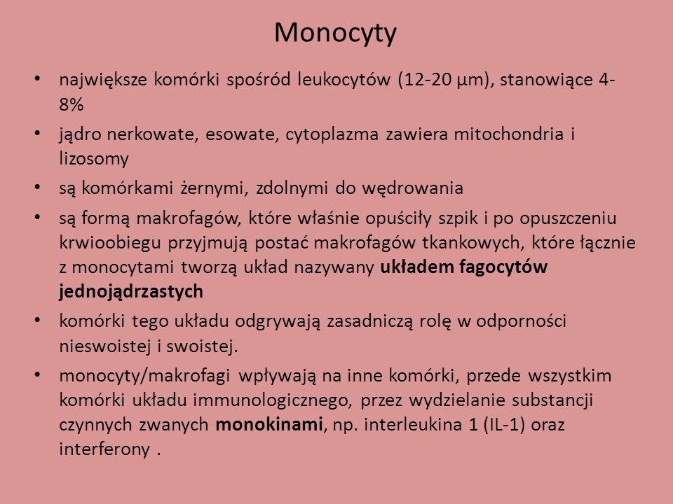 Monocyty największe komórki spośród leukocytów (12-20 µm), stanowiące 4-8% jądro nerkowate, esowate, cytoplazma zawiera mitochondria i lizosomy.