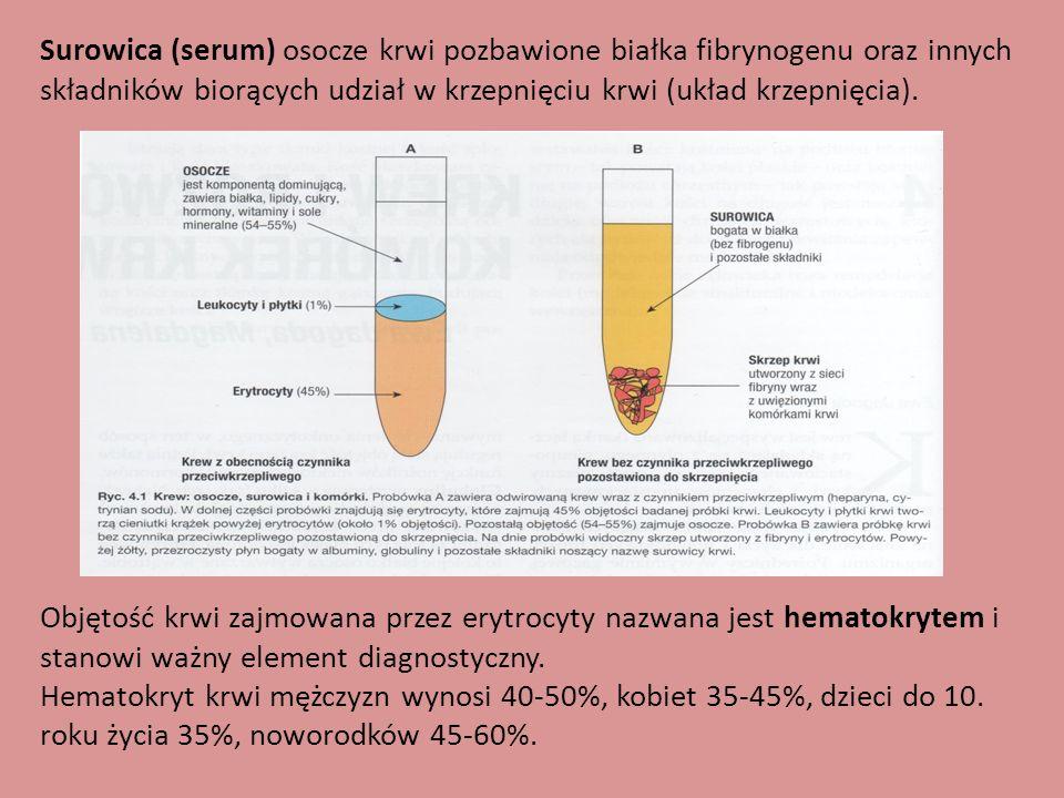 Surowica (serum) osocze krwi pozbawione białka fibrynogenu oraz innych składników biorących udział w krzepnięciu krwi (układ krzepnięcia).