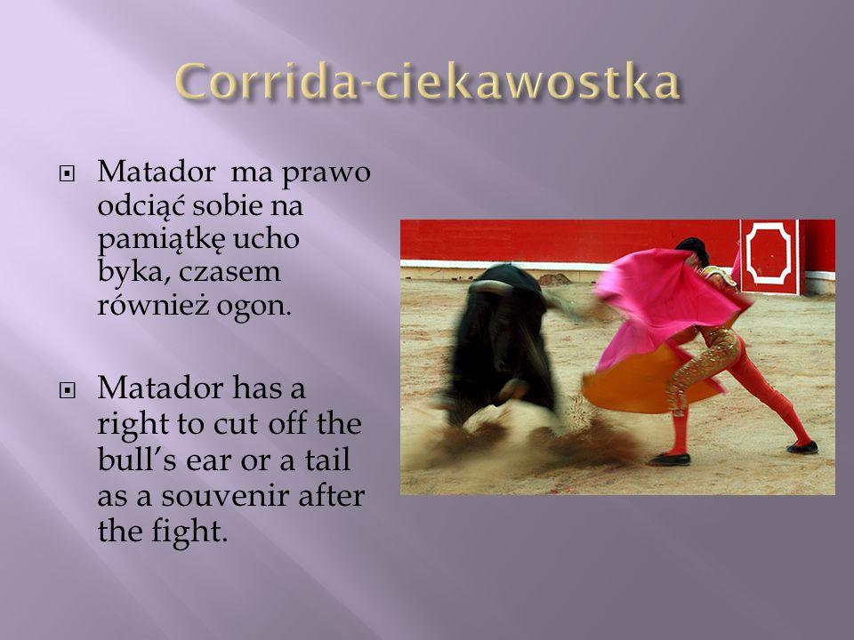 Corrida-ciekawostka Matador ma prawo odciąć sobie na pamiątkę ucho byka, czasem również ogon.