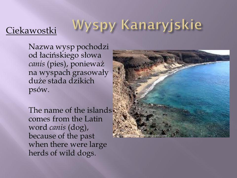 Wyspy Kanaryjskie Ciekawostki