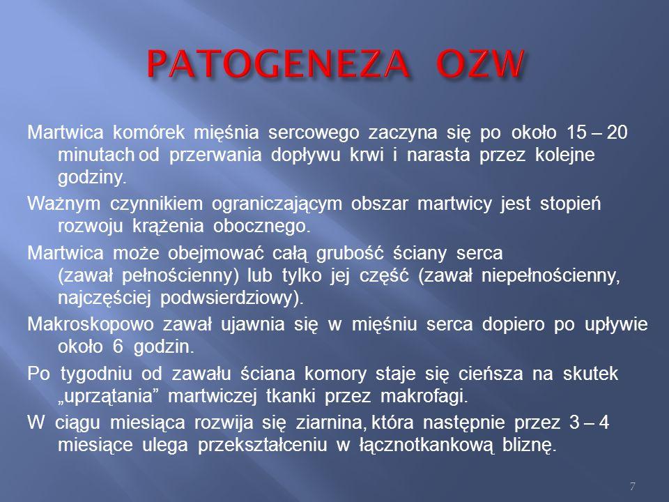 PATOGENEZA OZW