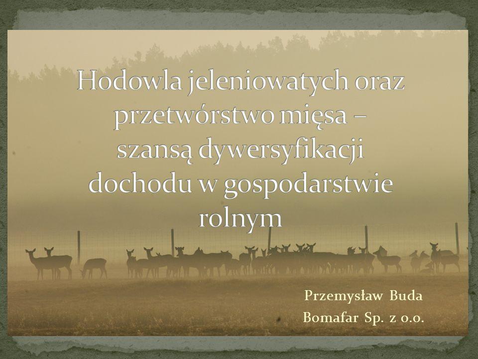 Przemysław Buda Bomafar Sp. z o.o.