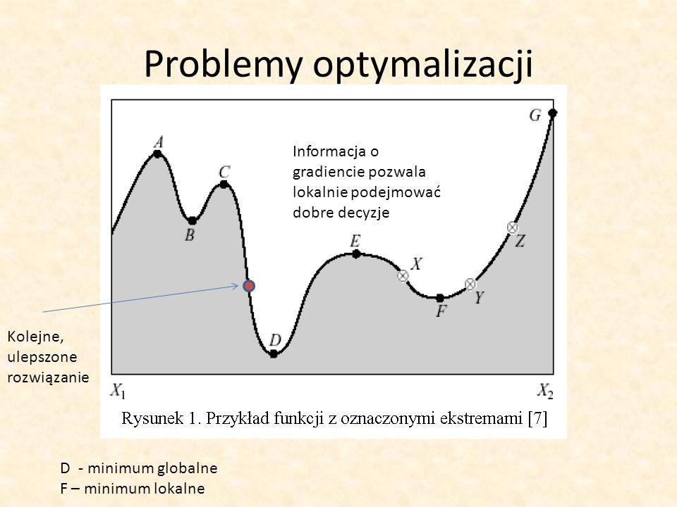 Problemy optymalizacji