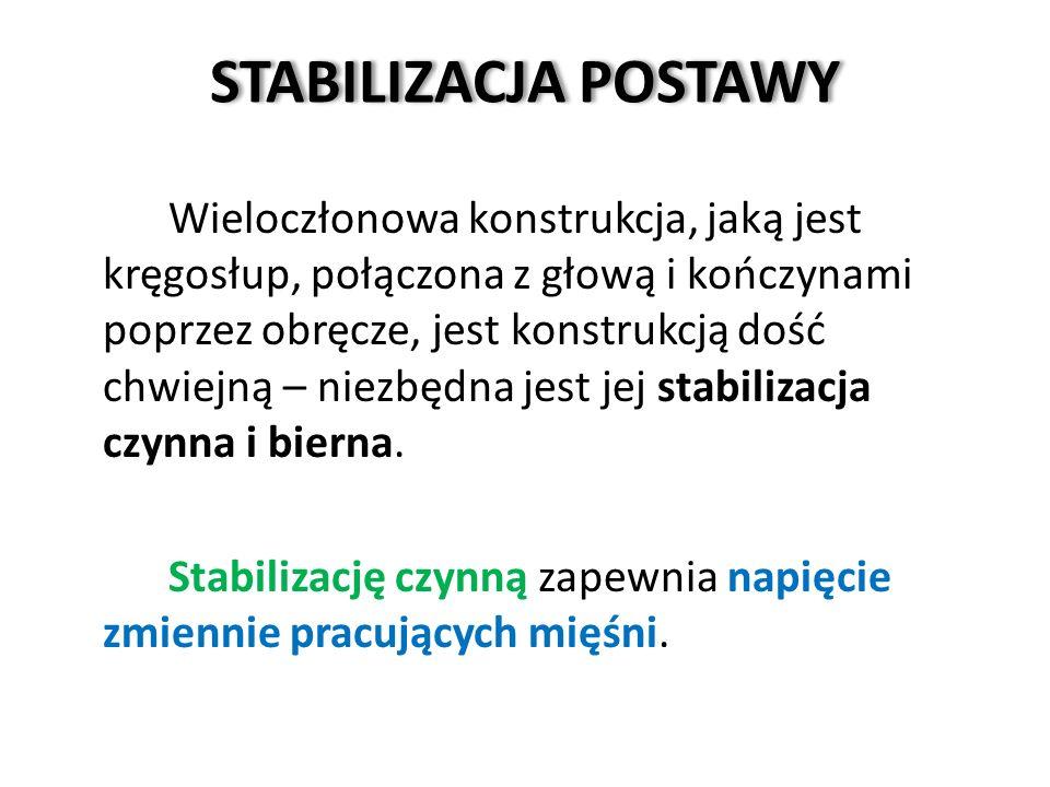STABILIZACJA POSTAWY