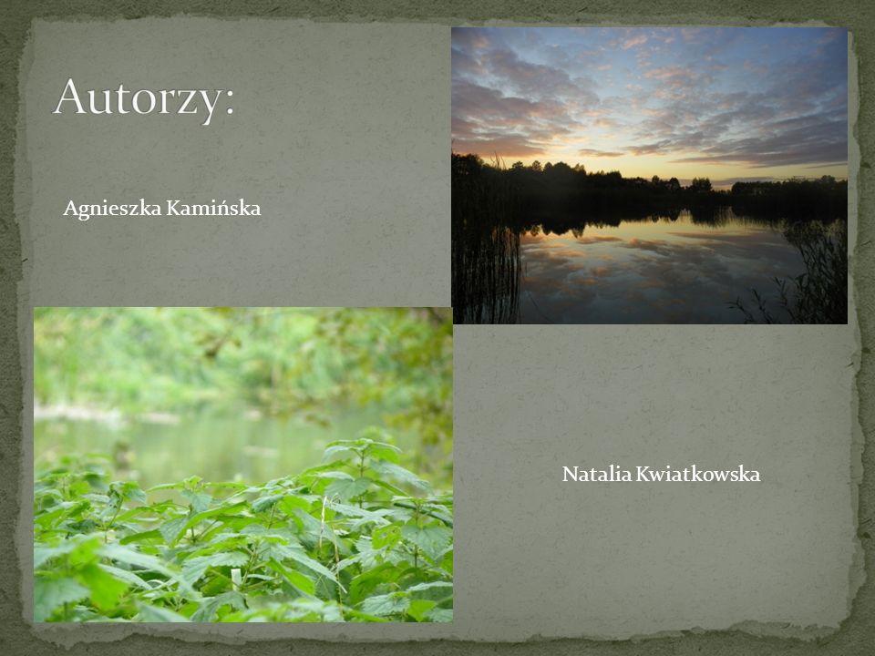 Autorzy: Agnieszka Kamińska Natalia Kwiatkowska
