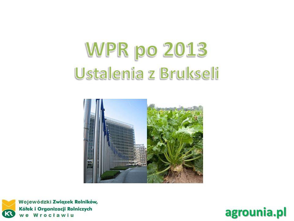 WPR po 2013 Ustalenia z Brukseli