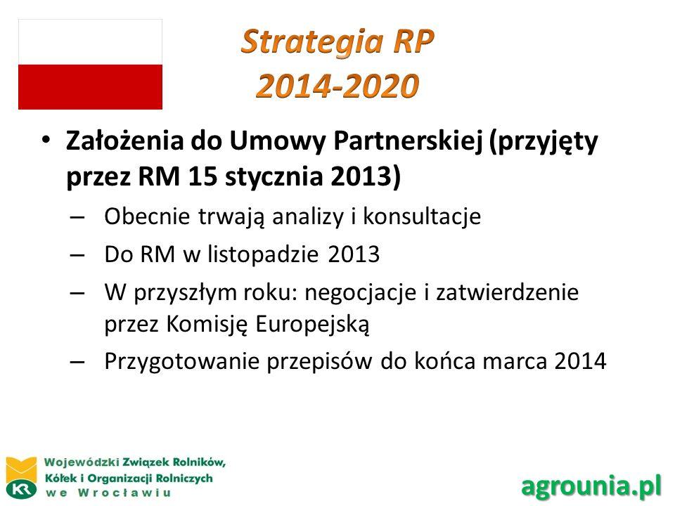 Strategia RP 2014-2020 Założenia do Umowy Partnerskiej (przyjęty przez RM 15 stycznia 2013) Obecnie trwają analizy i konsultacje.