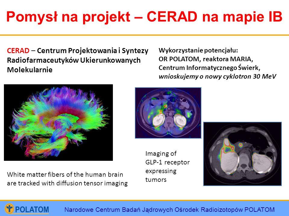 Pomysł na projekt – CERAD na mapie IB