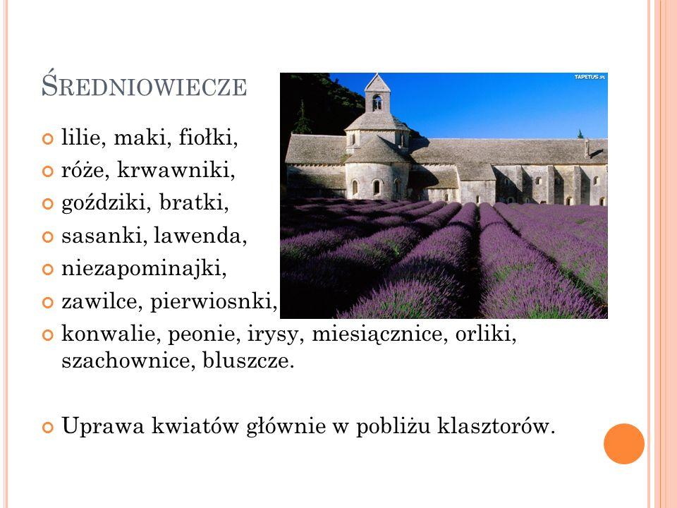 Średniowiecze lilie, maki, fiołki, róże, krwawniki, goździki, bratki,