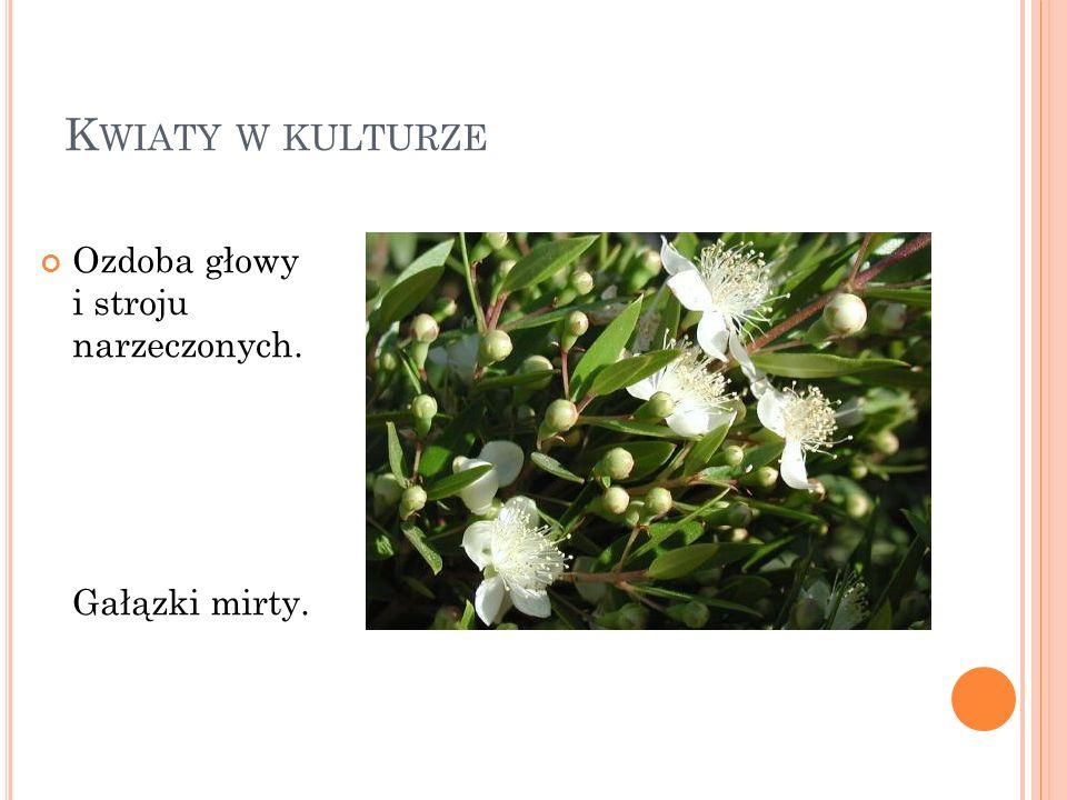 Kwiaty w kulturze Ozdoba głowy i stroju narzeczonych. Gałązki mirty.